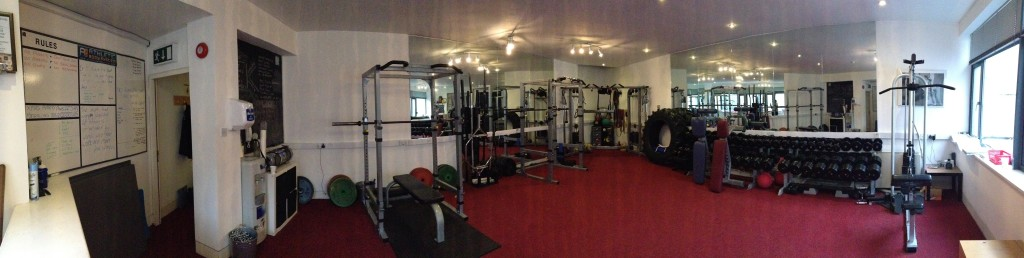 the-abs-gym-personal-trainer-dublin-1024x258