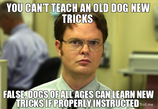 you-cant-teach-an-old-dog-new-tricks-false-dogs-of-all-ages-can-learn-new-tricks-if-properly-instructed